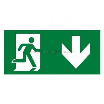 Noodverlichting pictogram symbool Pictogram naar beneden APIC-1
